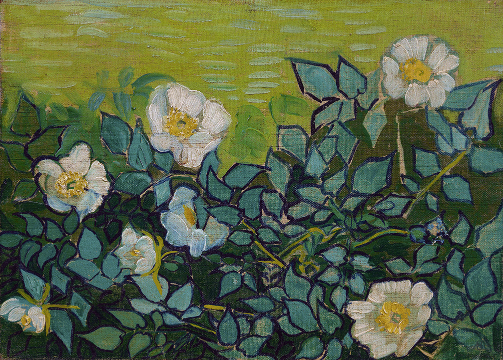 Wild Roses by Vincent van Gogh | Lone Quixote