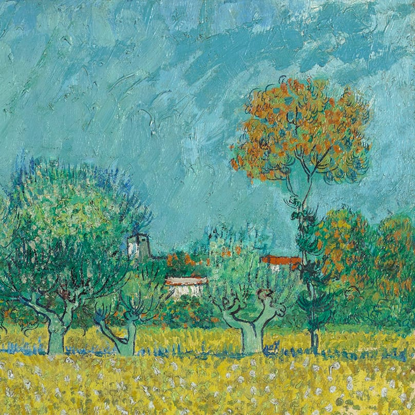 Field with Irises near Arles (detail) by Vincent van Gogh