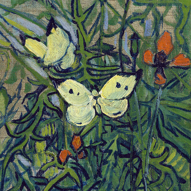Butterflies and Poppies  (detail) by Vincent van Gogh