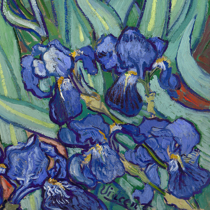 Irises (detail) by Vincent van Gogh