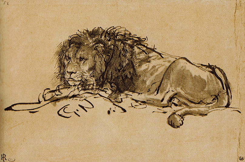 Lion Resting (sketch) by Rembrandt