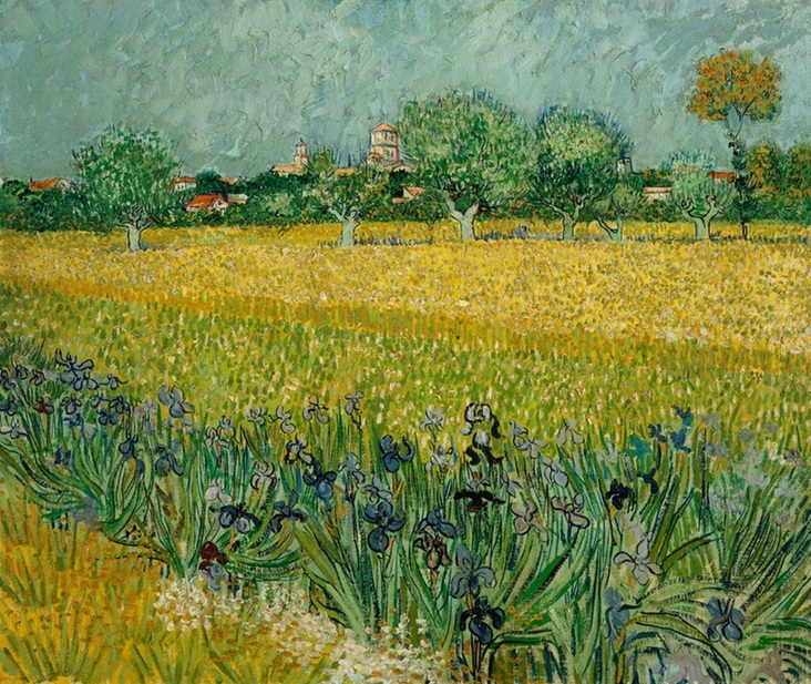Field with Flowers near Arles by Vincent van Gogh | Lone Quixote