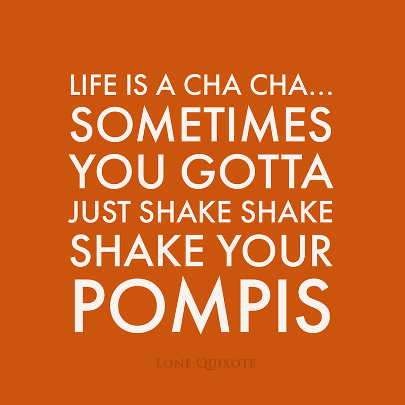 life is a cha cha... sometimes you gotta just shake shake shake your pompis | Lone Quixote