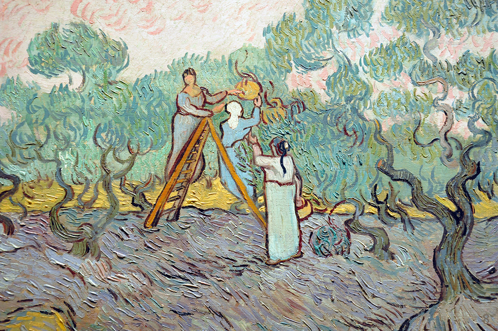 Women Picking Olives by Vincent van Gogh | Lone Quixote
